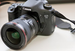 Dslr Camera Price In Dubai - Canon EF 11-24mm Lens Review