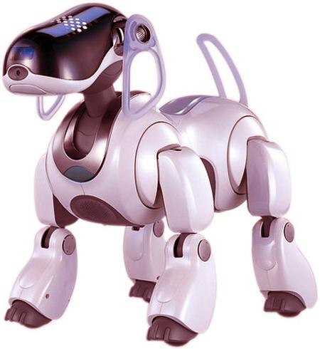 Robot Olympiad 2012
