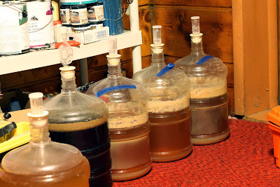 Three fermentors of the same saison, each with different Brett strains.