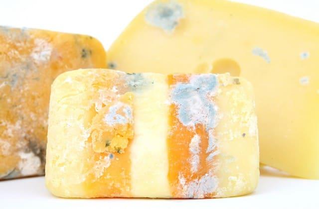 Makanan Kotor, Tempat Tumbuh Virus Dan Bakteri