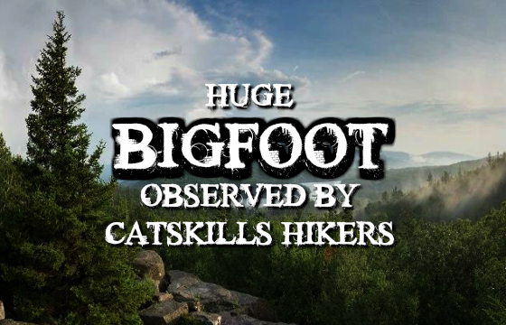 Huge Bigfoot Observed by Catskills Hikers