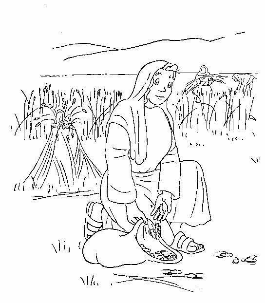 El Renuevo De Jehova Rut Y Noemi Imagenes Para Colorear
