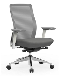 Multi Function Task Chair