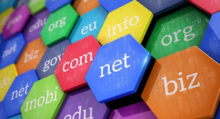 What's an A record  in DNS setup domain Registration?