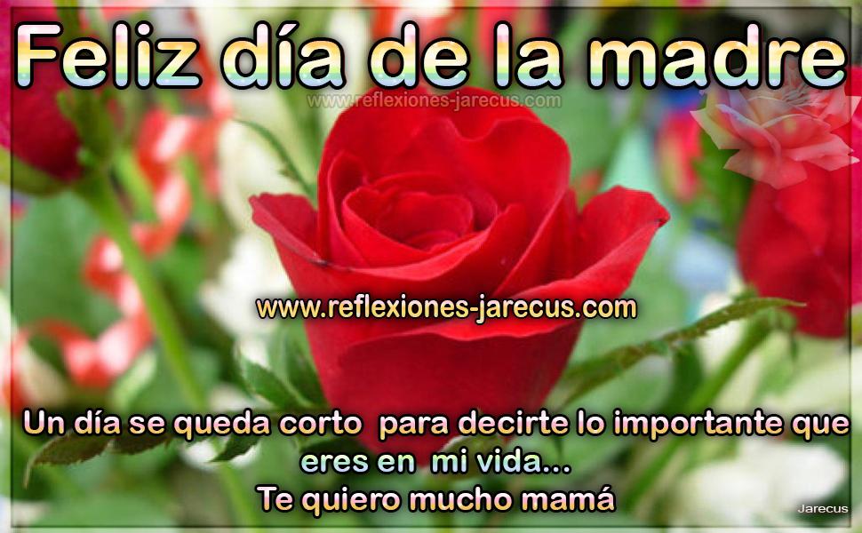 Feliz día de la madre Un día se queda corto para decirte lo importante que eres en mi vida... Te quiero mucho mamá