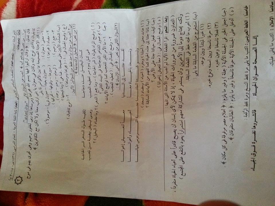 امتحان الإسكندرية لغة عربية للسادس الإبتدائى اليوم11يناير2015 10912907_76049580737
