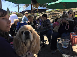 Sunday Brunch at the Warwick Winery