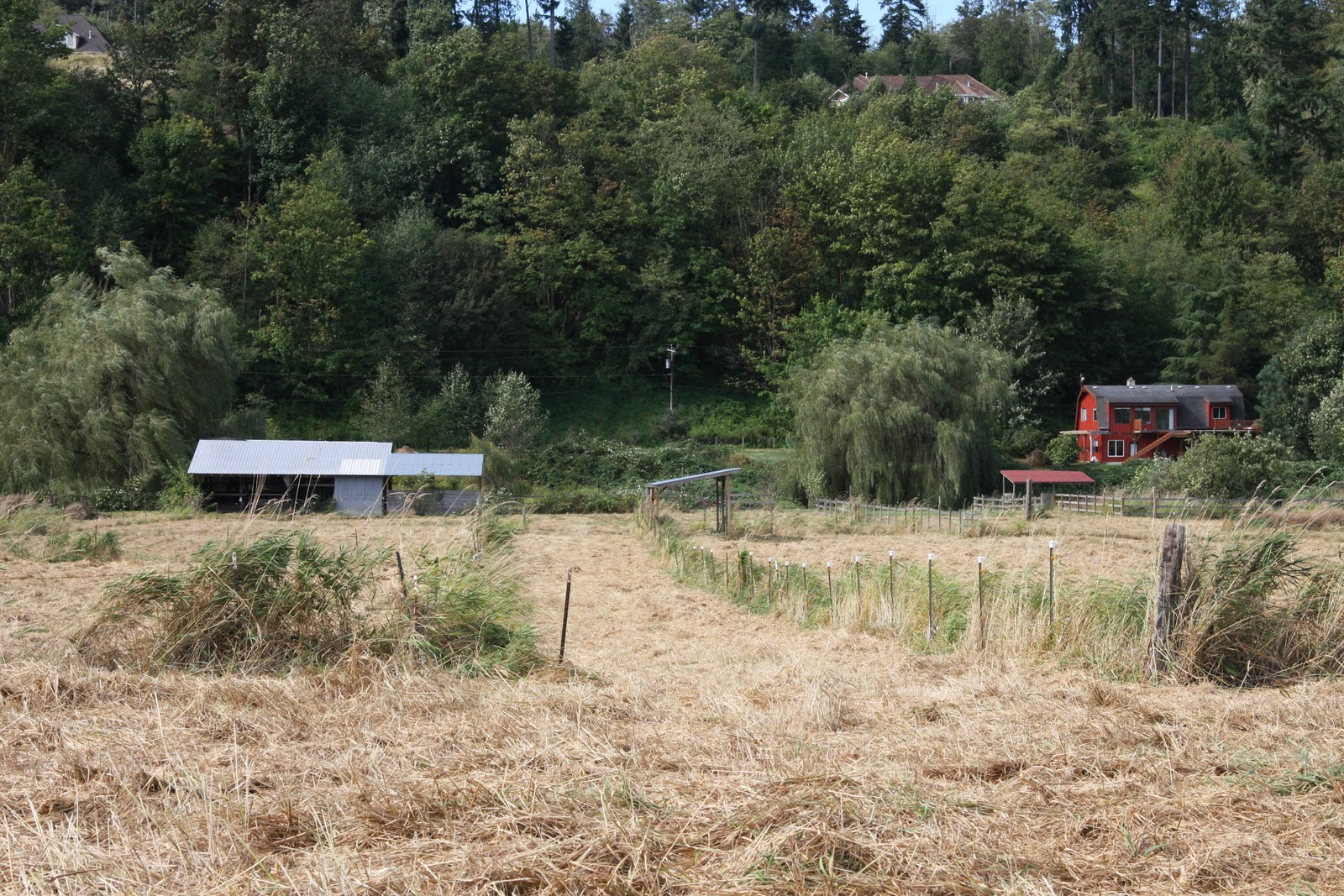Quarter acre farm - Craigslist snohomish county farm and garden ...