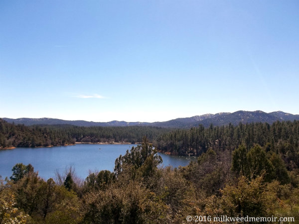 Lynx Lake, Prescott National Forest, Prescott, Arizona