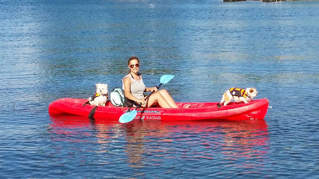 lake arrowhead, kayaking, dogfriendly
