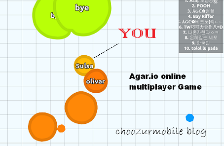 Agar.io Online Multiplayer Game