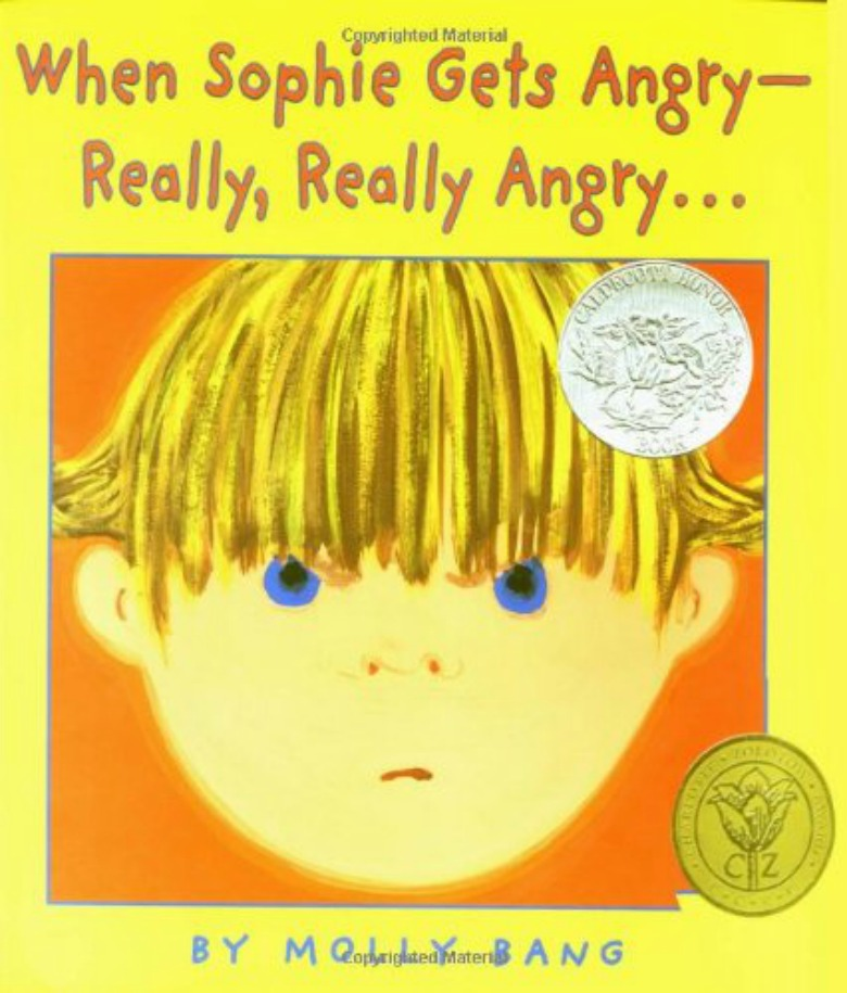 angry feelings book - Children's books about emotions and feelings for preschoolers