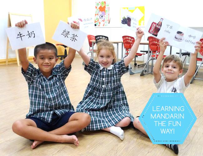 新加坡新生代的华文教育