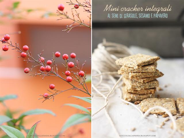 cracker integrali ai semi di girasole, sesamo e papavero