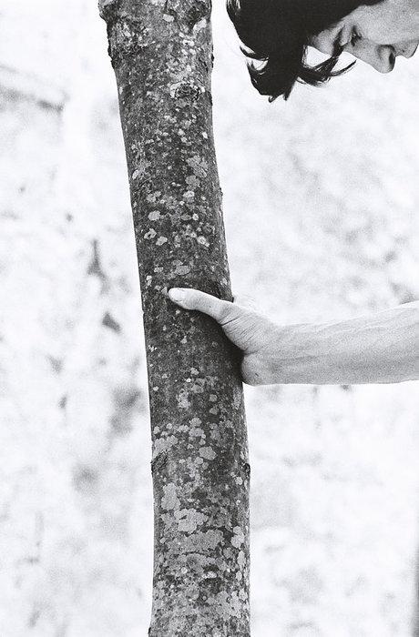 néon arbres membres datantfossiles record datant