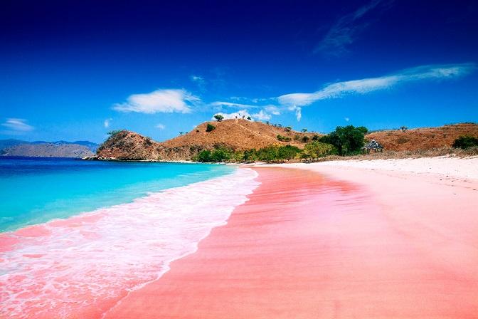 Keunikan Pantai Pink di Lombok Timur