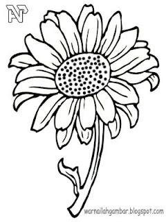 Mewarnai Bunga Matahari Mewarnai Gambar