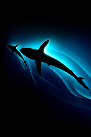 iPhoneZone: Shark Fish iPhone Wallpapers