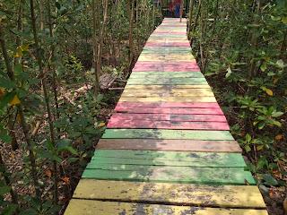 Mempawah Mangrove Park 4
