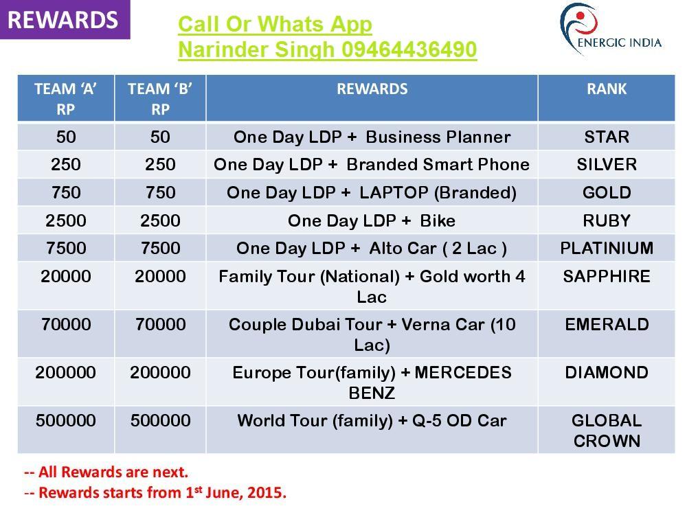 energic india business plan