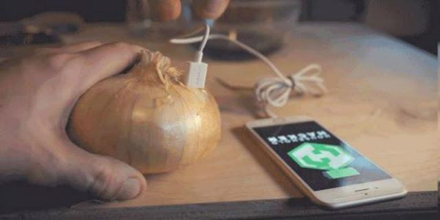 اغرب من الخيال قم بشحن بطارية هاتفك المحمول عن طريق بصلة !!تعرف علي الطريقة لتنفذها