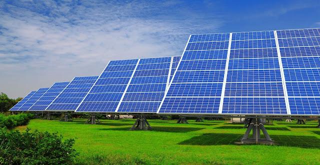 هولندا : بناء أكبر مزرعة للطاقة الشمسية في العالم