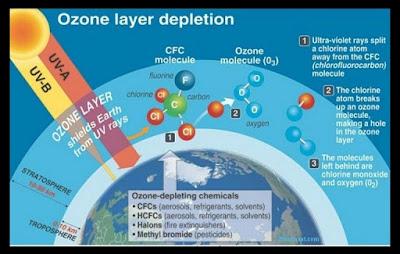Ozone Layer Information in Hindi