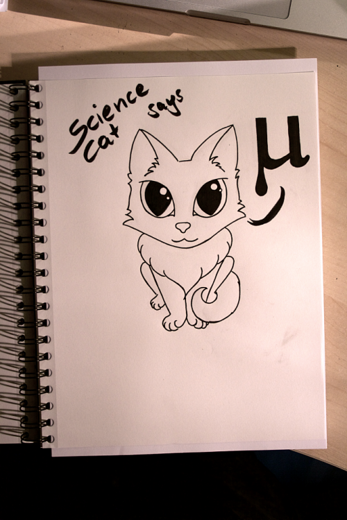 Science Cat | Inktober | www.zeitunschaerfe.de