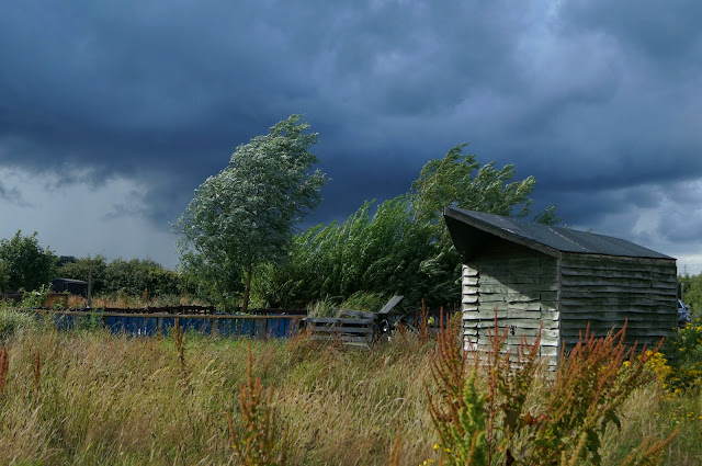 thundery rain coming - www.growourown.blogspot.com ~ an ecotherapy blog