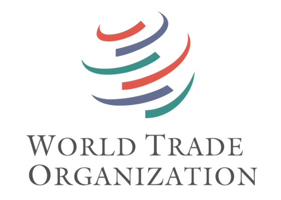 Whats Wrong With The Wto Option