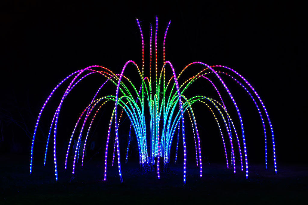 Fountains of Light at Winter Walk of Lights