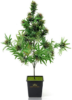 Artificial Cannabis Tree, the weed stuff