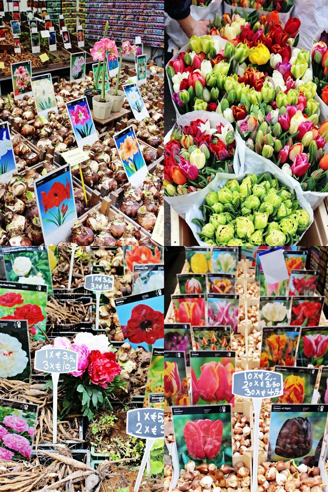 Amsterdam Bloomenmarkt