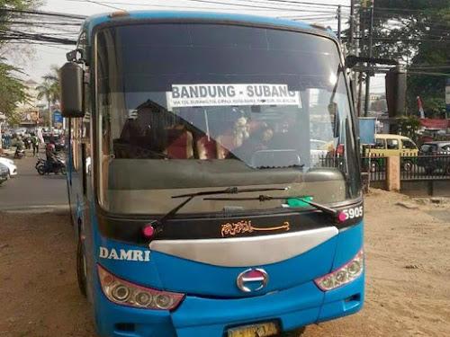 Bus DAMRI Bandung-Subang