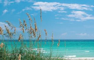Seachase Condos For Sale, Orange Beach AL