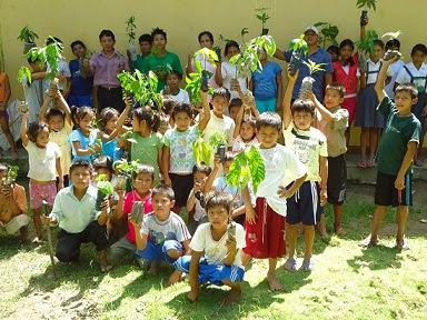 Educación Ambiental en los Niños