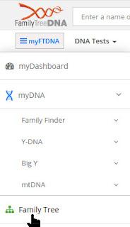 FTDNA family tree