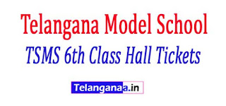 Telangana Model School TSMS 6th Class Hall Tickets 2017