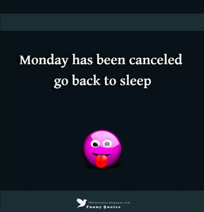 Monday has been canceled go back to sleep
