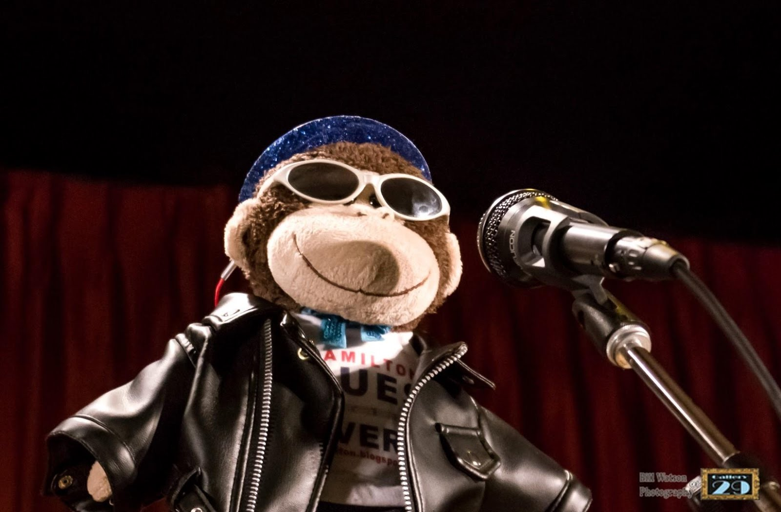 Follow our Monkey Mascot on His Music Lovin' Adventures