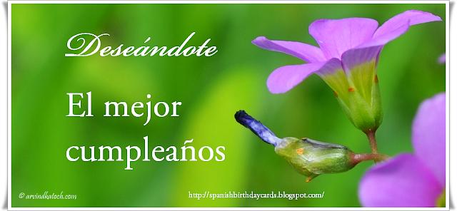 Spanish, Birthday Card, Deseándote, mejor cumpleaños,