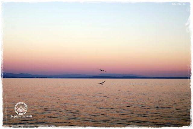Gartenblog Topfgartenwelt Kroatien: Abendstimmung am Strand von Opatija