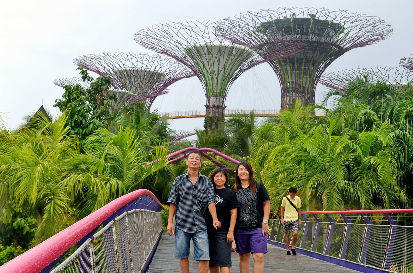Trip To Gardens By The Bay Singapore Bay South Garden