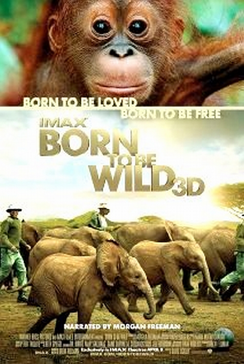 """The Voice Of Silence: Review of film: """"BORN TO BE WILD"""" in"""