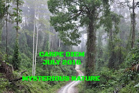 http://chevrefeuillescarpediem.blogspot.in/2016/07/carpe-diem-1005-heather.html