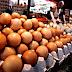 Harga Lebih Murah, Telur Ayam Asal Medan Tak Layak Konsumsi