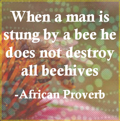 When a man is stung by a bee he does not destroy all beehives