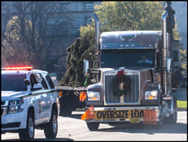 Special Kenworth W990 hauling the 2019 U.S. Capitol Christmas Tree