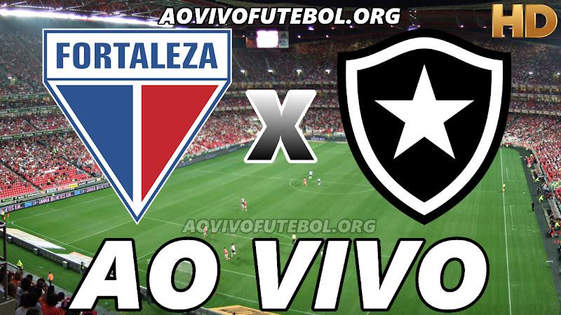 Fortaleza x Botafogo Ao Vivo HD TV PFC