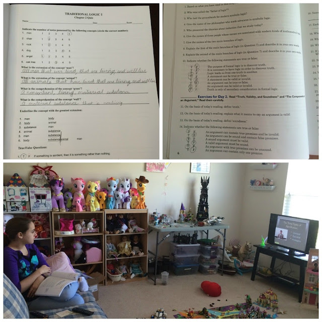 Unexpected Homeschool: Review of Memoria Press - Traditional Logic I